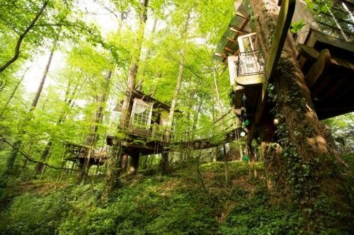 02-Secluded Intown Treehouse