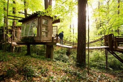 03-Secluded Intown Treehouse
