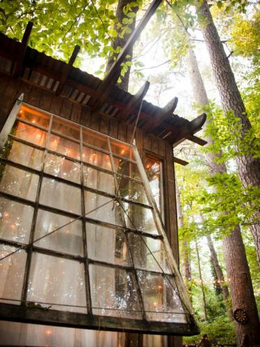 15-Secluded Intown Treehouse