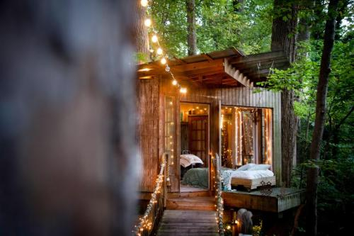 17-Secluded Intown Treehouse