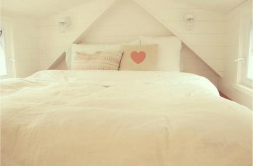 Capia-Tiny-House-Ma-Maison-Logique-12
