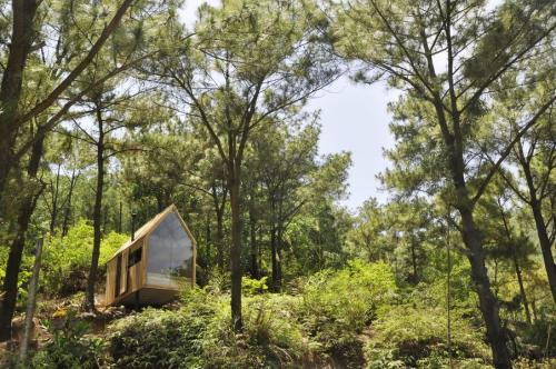 Forest House-chuvandong-tinyhouse.pl-1