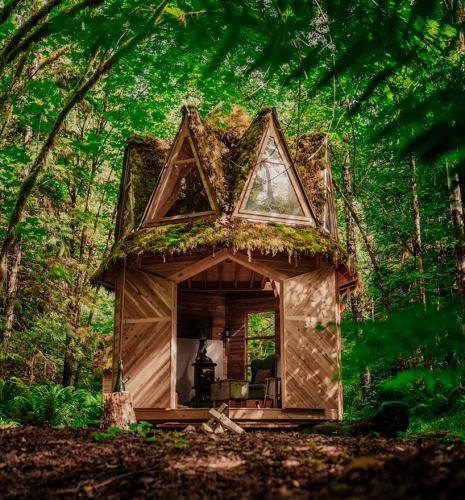 jacob-witzling-cabin-01